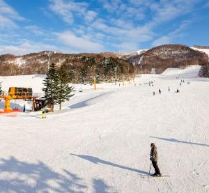 kamui ski links ski resort