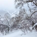 kiroro ski center off piste area