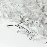 kiroro ski center snow