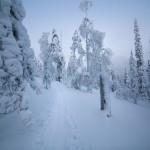 Pyhä Pyhätunturi ski touring