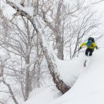 niseko grand hirafu powder