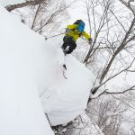 niseko grand hirafu forest skiing