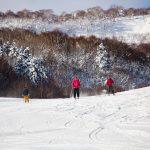 asari asarigawa onsen slopes